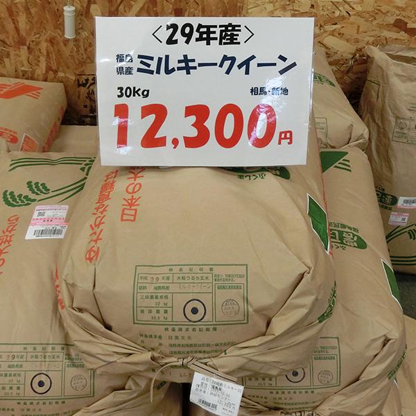 福島県産(相馬・新地) ミルキークイーン(特別栽培米)30kg玄米