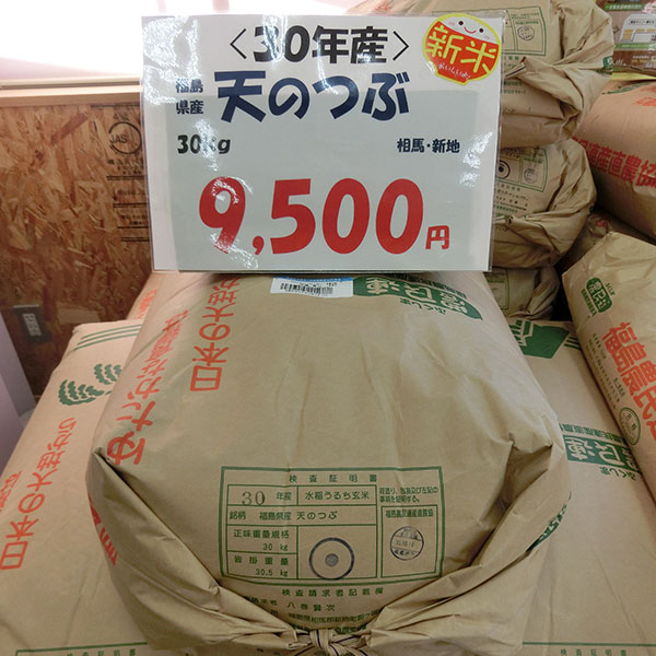 福島県産(相馬・新地) 天のつぶ(特別栽培米)30kg玄米