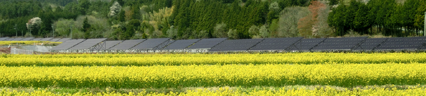 ソーラーパネル写真