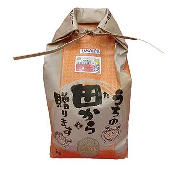 令和2年産 福島県産 ひとめぼれ 5kg 玄米